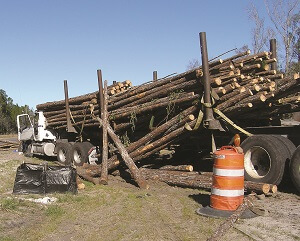9 million recovery logging truck accident 4